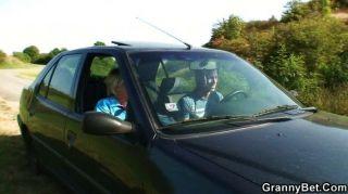 alte Hündin wird im Auto von Fremden genagelt