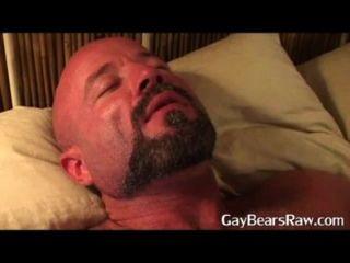 hot guy von großen reifen Bären gefickt