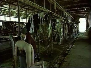 asiatische Frau vorgibt, eine Kuh zu melken, ihn als Mann boobs
