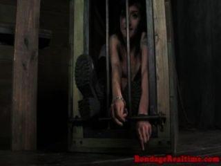 mollie stieg mit schwarzen Schlange bestraft