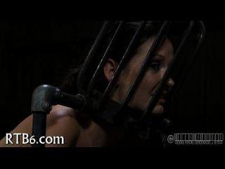 vier gals im zierlichen Käfig