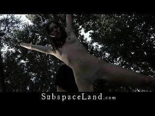 haarige nackte Pussy im Freien gebunden und Gesäß gepeitscht
