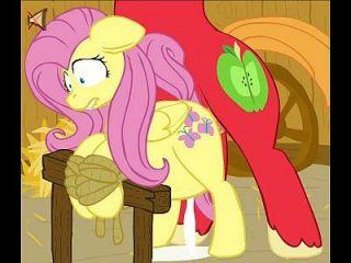 mein kleines pony fluttershy