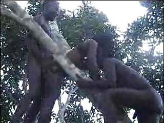 echte afrikanische Amateur Fick auf dem Baum Teil 2