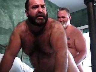 xxxl die Reparatur bear big daddy