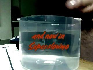 Sperma in Wasser