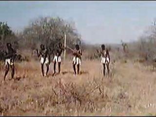 afrikanische enorme Penisse! echten Safari!