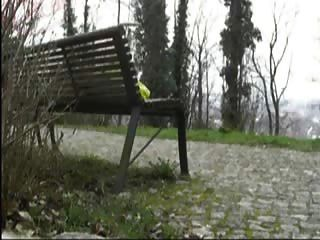 carins in öffentlichen Park Masturbation