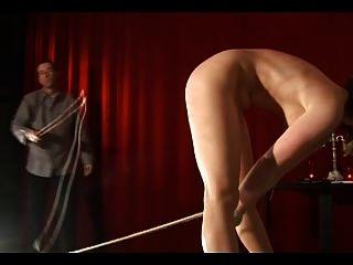schlanke Beine und eine lange Peitsche