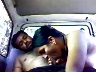 Indische Paare in der Auto