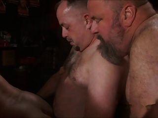 Papa Bär bei Sex-Party gefickt