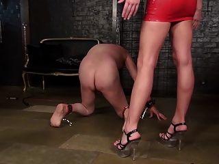 ari die ballbusting Slave