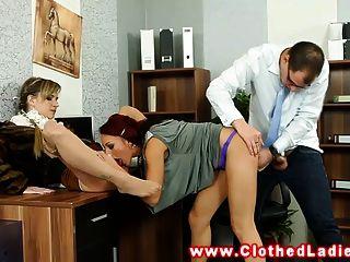 glamourös Euro Damen ficken Kerl im Büro