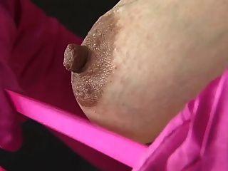 schwanger - Hasel