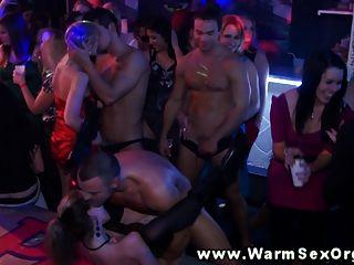 geile Party-Schlampen in Orgie gefickt