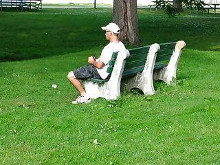 Streicheln im Park