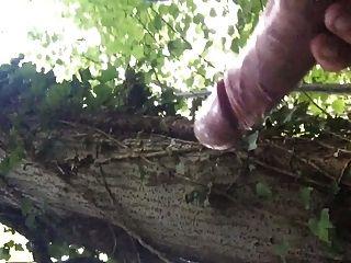 uk großen Schwanz cum im Wald