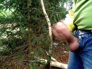 Wichen im Wald mit spritzen