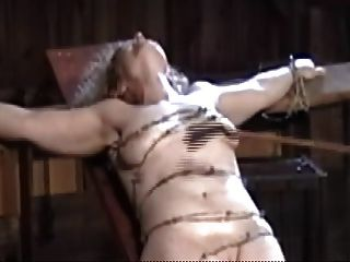 gebunden mit Stacheldraht, weich Tit und Pussy Fleisch Zerkleinerungs
