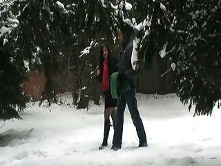 Sex in der Öffentlichkeit in den Schnee