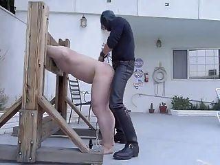 Slave-Rasse von Master in Palisade