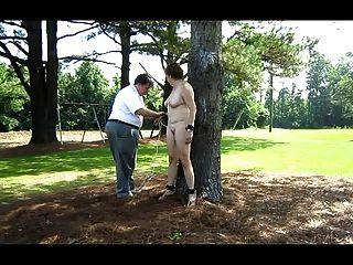 Neva gebunden im Hinterhof an einen Baum