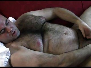 Bär mit einem großen schönen Hintern