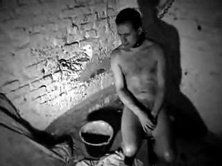 im Keller gefickt