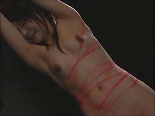 einen japanischen ol peitschen - schöne rote Flecken