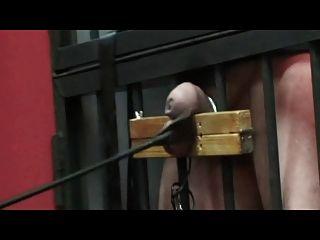 ernsten Cock and Ball Torture