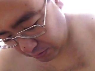 japanisch Papa Bär
