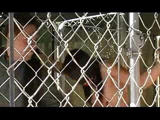 Sklavinnen im Freien und bestraft gebunden