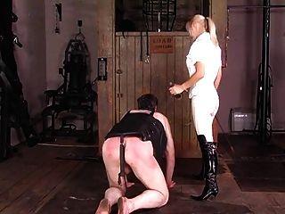 exquisite britische reitende Herrin trainiert ihr Pony