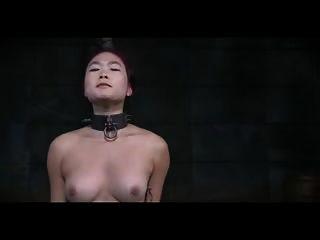Brustpeitsche ein chinesischer Amerikaner m