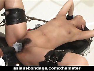 asiatische Babe Bond und fucked von einer Fickmaschine