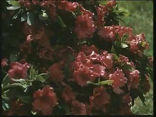 klassische britische Schlampe louise wird im Garten gefickt
