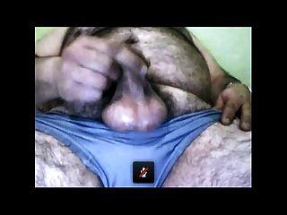 perfekte Bär Cumming