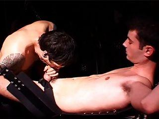 bdsm Ritzel britische Miete Junge gefickt in Schlinge schwule Jungs