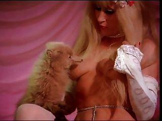 klassische Striptease-Theorie
