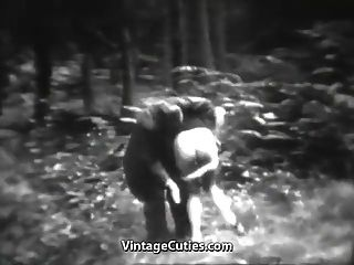 atemberaubende Hündin hat Spaß im Wald (1930er Jahrgang)