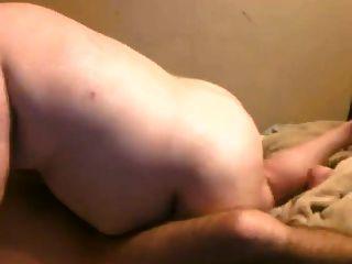 Bär fucking seinen Cub Freund