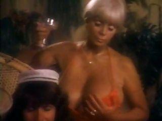 sexy Damen spielen herum und werden in wilden Vintage Dreier gefickt