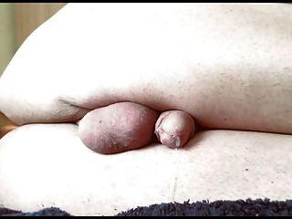 Prostata Melken 5 Sperma Sperma fließt