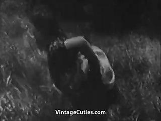 rauer Sex in der grünen Wiese (1930er Jahrgang)