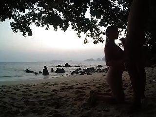Saugen Schwanz am Strand