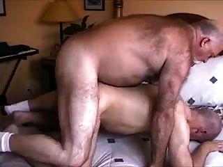 nicht Papa Bär Cums in meinem Arsch