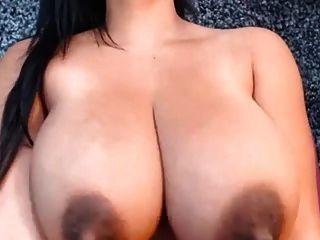 erstaunliche Latin Tits