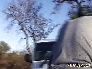 extreme afrikanische Safaritour