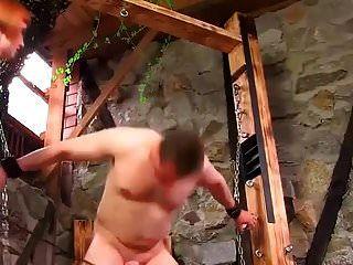 Schwanz und Schenkel geschlagen