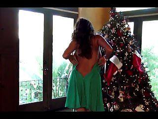 frohe weihnachten von petra verkaik
